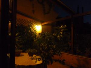 ROMA maggio 2014 052