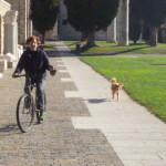 Friuli, otobre 2014 012