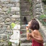 Girasoli e Paola, Levaggi 017