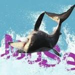 INCONTRI AL MUSE <br/> Gli squali bianchi del Sudafrica