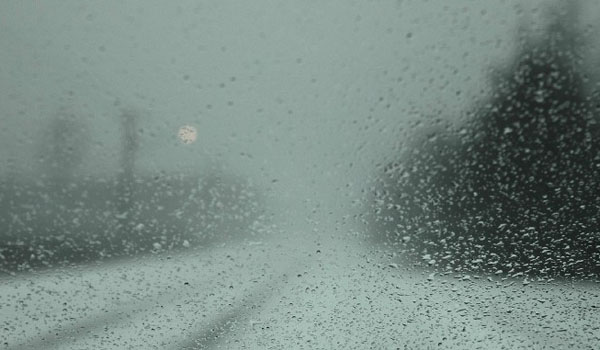 600 windscreen