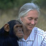 "DARWIN YEAR 2009 <br /> ""Reasons for Hope"", Jane Goodall a Trento"