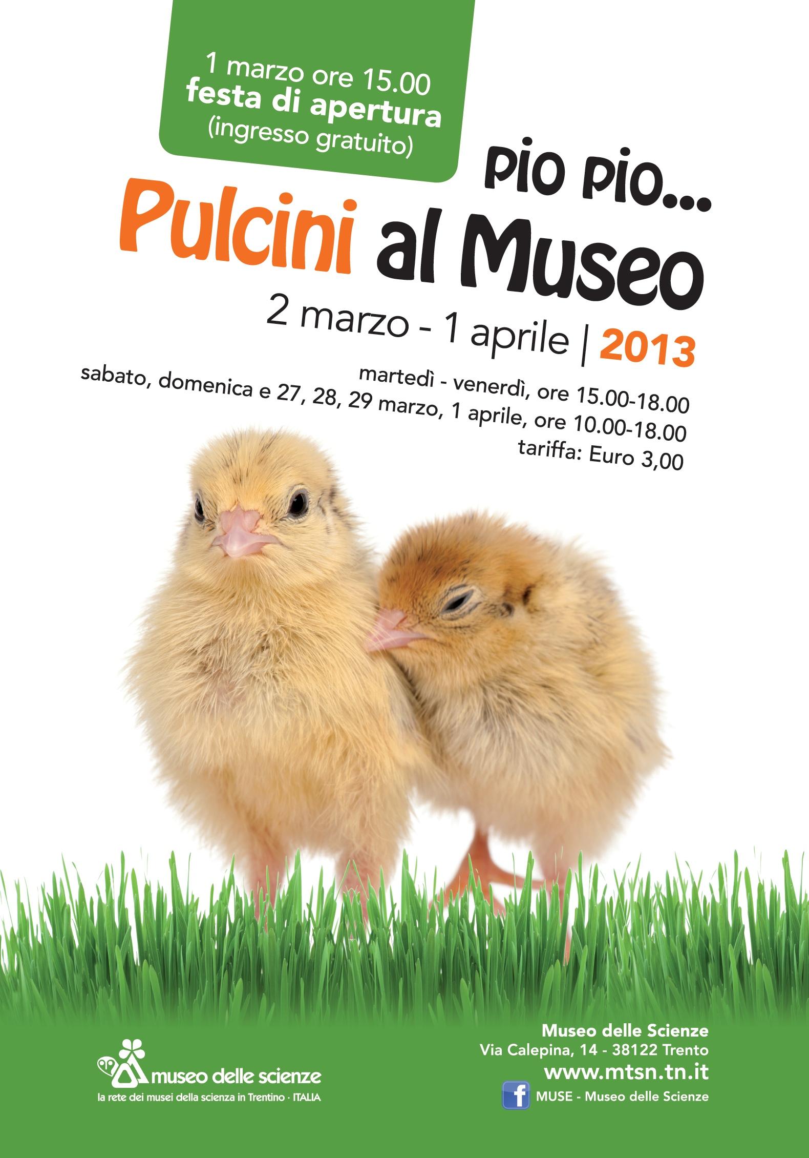 Pulcini al museo ultimi giorni trento blog trento blog for Piccoli progetti di palafitte